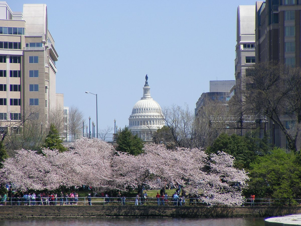 Washington DC Skyline-Capital Building