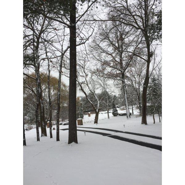 Tire Tracks Snow Melting In A Driveway - Kildeer-IL