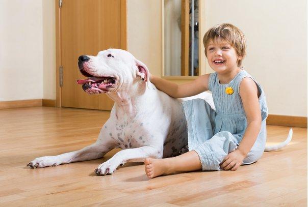 Little girl with dog sitting barefeet on Wooden floor